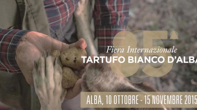 Alba – Fiera internazionale del tartufo bianco 2015